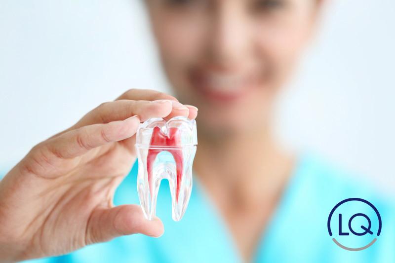 que es una endodoncia-endodoncia-dentistas las palmas-odontologos las palmas-clinica lopez quevedo